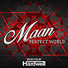 Perfect World - Maan